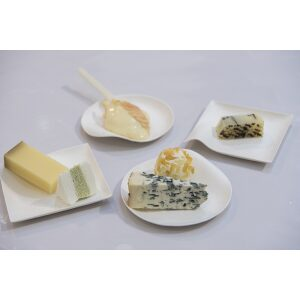 Kaku Small Tasting Plate filled with ice cream