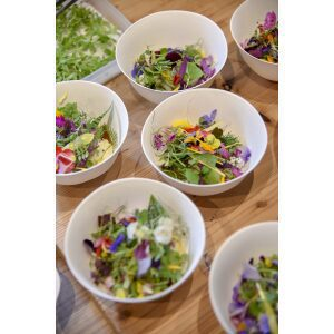Compostable Bowls filled with salad arranged on a wooden table