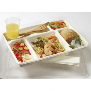 Five Section Tray filled with food and salad
